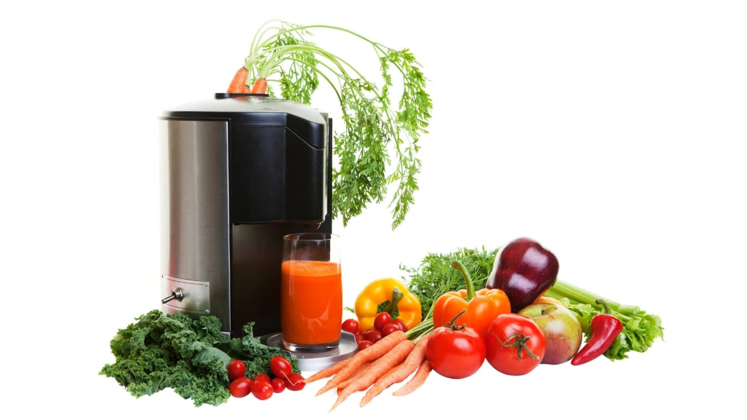 The 10 Best Masticating Juicers